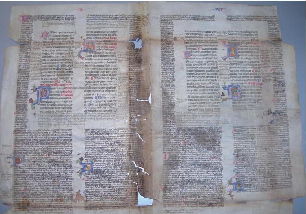 Toulouse, Bibliothèque Municipale, Ms 3006, verso